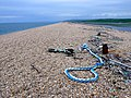 Chesil Beach - geograph.org.uk - 1286329.jpg