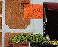 Chiles de chorro - Dolores Hidalgo, Guanajuato, México.jpg