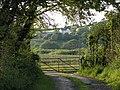 Cilfrey Isaf farm through farm gate - geograph.org.uk - 1347494.jpg