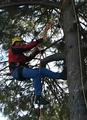 Climber.png