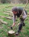 Clive Leeke sharpening a hedge stake.jpg