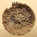 Close-coiled basket fragment, 7840-1870 BC, Danger Cave, Utah, plant material - Natural History Museum of Utah - DSC07266.JPG