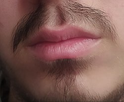 Close up man lips.jpg