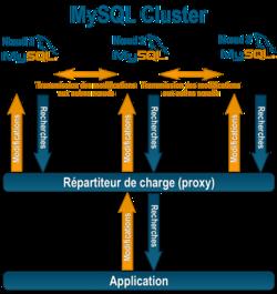 Mysql Cluster Pdf