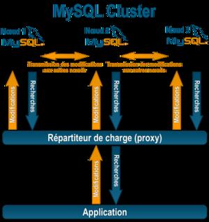 Mise en place d'un Cluster MySQL