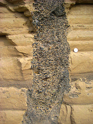Clastic dike - Vertical clastic dike, filled with coarse basaltic sand, cuts lighter-colored horizontal beds composed of finer grained material. Quarter for scale.