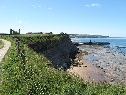 Coast near Whitby, North Yorkshire (23456080552)