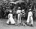 Cocoanut Cultivation by Doctor James Johnston died 1921.jpg