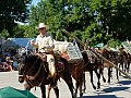 Cody Stampede Rodeo - Shoshone National Forest - 2017 02.jpg