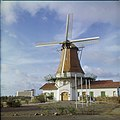 Collectie Nationaal Museum van Wereldculturen TM-20029584 Windmolen 'De Olde Molen' Aruba Boy Lawson (Fotograaf).jpg