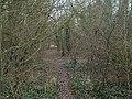 Compton Berkshire disused railway track - geograph.org.uk - 118426.jpg