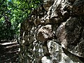 Coral Rock Wall - panoramio.jpg