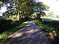 Country Lane - geograph.org.uk - 266253.jpg