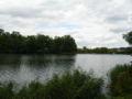 Creutzwald lac 08.jpg