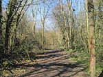 Crofton Wood path.JPG