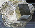 Cubic crystal of pyrite in metamarlstone (Navajun, Spain) 1 (18942531190).jpg
