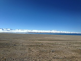 Tibetan Plateau alpine shrublands and meadows type of regional vegetation