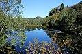 Davanger pond, Askøy, Hordaland, Norway - panoramio.jpg