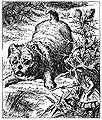 De Alice's Abenteuer im Wunderland Carroll pic 14.jpg