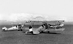 De Havilland Tiger Moths of Air Force of Iran.jpg