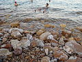Dead Sea, people swiming.JPG