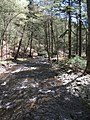 Delaware Water Gap National Recreation Area - Pennsylvania (5678342544).jpg