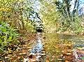 Der Goldbach im Herbst - panoramio.jpg