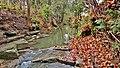 Dernier sursaut de couleurs sur le ruisseau avant le gel hivernal. - panoramio.jpg