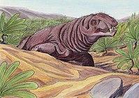Deuterosaurus2DB.jpg