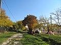 Dioșod 457168, Romania - panoramio (146).jpg