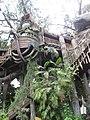 Disneyland-TarzansTreehouse.jpg