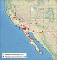 Distribution of Neopalpa species.jpg