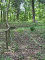 Dixon Cemetery Helena AR 002.jpg