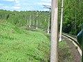 Dmitrovsky District, Moscow Oblast, Russia - panoramio (60).jpg