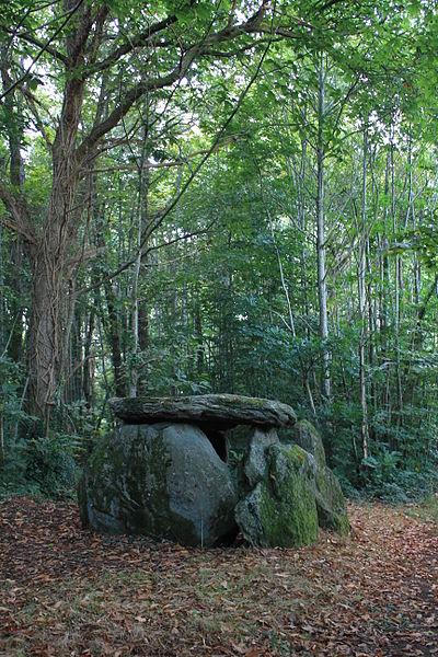 Dolmen de Tri-Men-de-Castello. Vue d'implantation du nord vers le sud