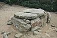 Dolmen de ca l'arenes-dosrius 2013.JPG