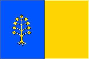 Dolní Tošanovice - Image: Dolní Tošanovice vlajka