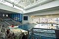Dolphin area Baltimore Aquarium.jpg