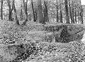Domaine national, château - Parc, sol forestier - Versailles - Médiathèque de l'architecture et du patrimoine - APMH00015934.jpg