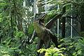 Dortmund - Rombergpark - Gewächshäuser in - Wollemia nobilis + Dino 01 ies.jpg