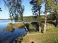 Drūtūnai 30204, Lithuania - panoramio (2).jpg