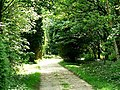 Driveway to Littlewood - geograph.org.uk - 182699.jpg