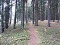 Dusetų sen., Lithuania - panoramio (125).jpg