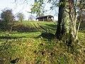 Dutch Barn - geograph.org.uk - 287722.jpg
