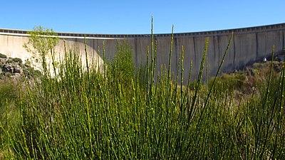 ES4150085 Ribera del río Tormes 1.jpg