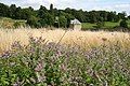 Easton Walled Gardens - geograph.org.uk - 939101.jpg