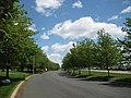 Edison, Fieldcrest Ave, 05.05.2011 - panoramio.jpg