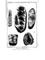 Encyclopedie volume 5-176.png