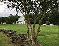 Endview Plantation View West Drive Newport News VA USA June 2020.jpg