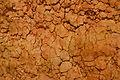 Enlluït, fragment de revestiment del mur de l'habitatge principal de la Lloma de Betxí.JPG